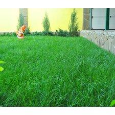 Смесь газонных  трав Универсал, 0,5 кг (Дом семян)