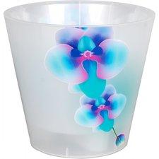 Горшок для цветов Фиджи Орхид 1.6 л, прозрачный