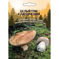 Мицелий грибов Белый гриб Классический