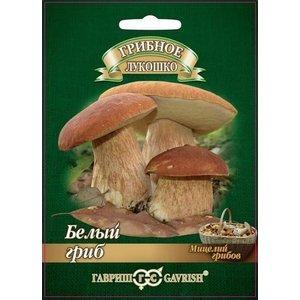 Мицелий Белый гриб (Гавриш), 15мл