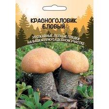 Мицелий грибов Красноголовик Еловый