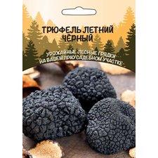 Мицелий грибов Трюфель Летний чёрный