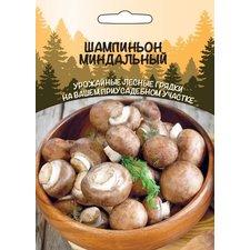Мицелий грибов Шампиньон Миндальный