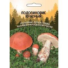 Мицелий грибов Подосиновик Красный
