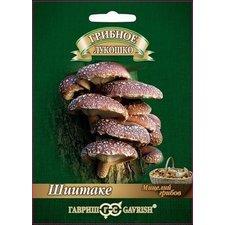 Мицелий грибов Шиитаке