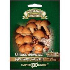 Мицелий грибов Опенок японский Фолиото намеко