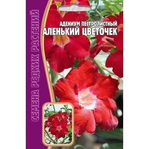 Семена цветов Адениум пестролистный Аленький цветочек, 3 сем.