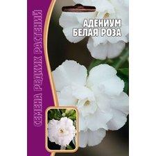 Семена цветов Адениум Белая роза, 3 сем.