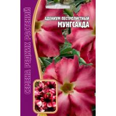 Семена Цветов Адениум пестролистный Мунгсакда, 3 сем.