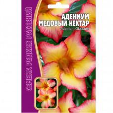 Семена цветов Адениум Медовый нектар, 3 шт.