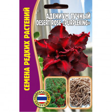 """Семена Цветов Адениум Тучный Desert rose """"PURPLEKING"""", 3 сем"""