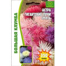 Семена цветов Астра Гигантские Лучи смесь, 350 сем.