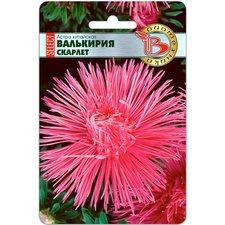 Семена цветов Астра китайская Валькирия селект Скарлет, 30 сем.