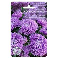 Семена цветов Астра китайская Хризантелла Сиреневый туман, 40 сем.