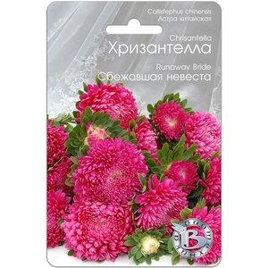 Семена Астра китайская Хризантелла Сбежавшая невеста, 40 сем.