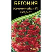 Семена цветов Бегония ампельная Иллюминейшн F1 Скарлет, 10 сем.