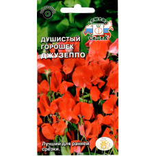 Семена Душистый горошек Джузеппо, 1г