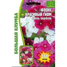 Семена цветов Флокс Красивый гном, 250 сем.