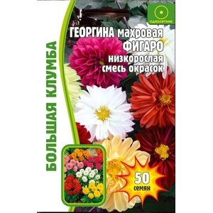 Семена цветов Георгина махровая Фигаро, 50 сем.