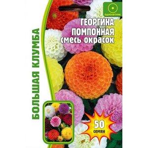 Семена цветов Георгина Помпонная (смесь окрасок), 50 сем.