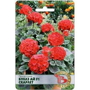 Семена цветов Пеларгония Буллз Ай F1 Скарлет, 5 сем.