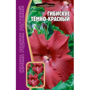 Семена цветов Гибискус Темно-красный, 5 сем.