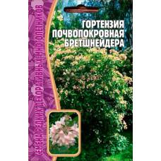 Семена Гортензия Почвопокровная Бретшнейдера, 20 сем.