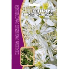 Семена цветов Клематис Винограднолистный, 7 сем.