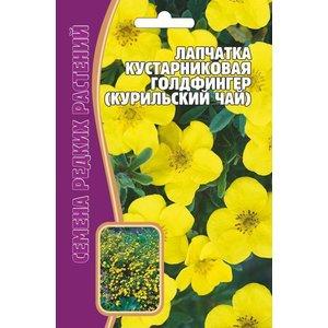 Семена Кустарниковая Голдфингер (Курильский чай)