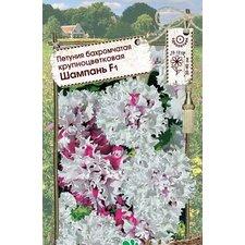 Семена цветов Петуния Шампань F1 (бахромчатая крупноцветковая), 10 сем.