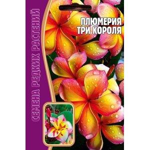 Семена цветов Плюмерия Три короля, 3 сем.