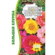 Семена Цветов Портулак Волшебный Ковер смесь, 3500 сем.