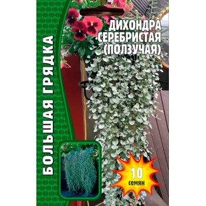 Семена Дихондра Серебристая (Ползучая) 10 сем