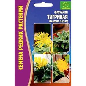 Семена Фаукария Тигриная, 3 сем.