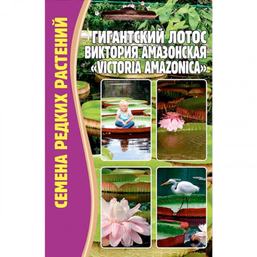 Семена Цветов Лотос Гигантский Виктория Амазонская, 2 сем.