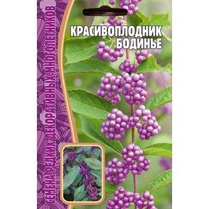 Семена Красивоплодник Бодинье, 7 сем.