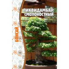 Семена Ликвидамбар Смолоностный Бонсай, 5 сем.