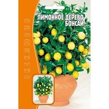 Семена Лимонное дерево Бонсай