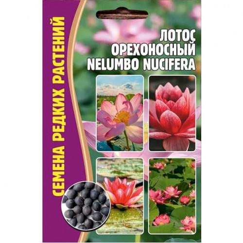 Семена Цветов Лотос Орехоносный Nelumbo Nucifera, 2 сем.