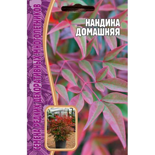Семена Нандина Домашняя, 4 сем.