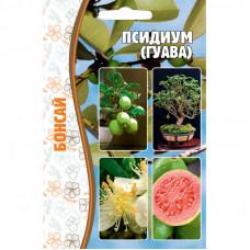 Семена Псидиум Гуава Бонсай, 10 сем.