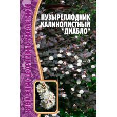 Семена Пузыреплодник Калинолистный Диабло, 15 сем.