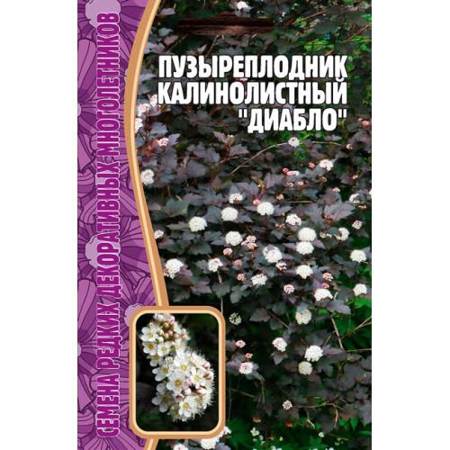 Пузыреплодник Калинолистный Диабло, 15 сем.