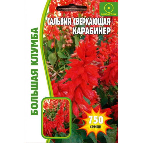 Семена Цветов Сальвия Сверкающая Карабинер, 50 сем.