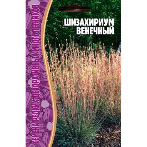 Семена Шизахириум Венечный, 20 сем.