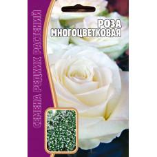 Семена Роза многоцветковая Белая, 5 сем.
