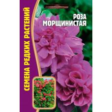 Семена Роза Морщинистая, 10 сем.