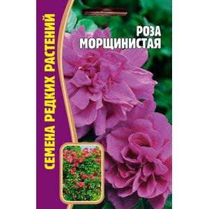 Семена Цветов Роза Морщинистая, 10 сем.
