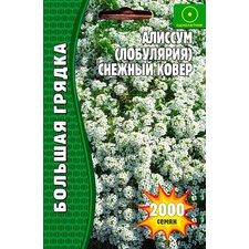 Семена цветов Алиссум (лобулярия) Снежный Ковер, 2000 сем.