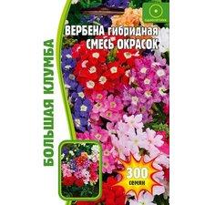 Семена цветов Вербена гибридная Смесь окрасок, 300 семян